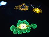 Flora exposition:DSC_1137.jpg