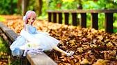 春天紅色葉雨2016.04:DSC07901.04.68.04.jpg
