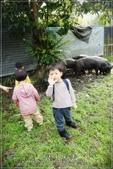 龍寶郊遊~宜蘭天山農場:DSC05902.JPG