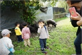 龍寶郊遊~宜蘭天山農場:DSC05901.JPG