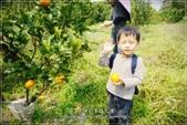 龍寶郊遊~宜蘭天山農場:DSC05919.JPG