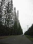 2006.03夏威夷之旅~:IMG_1920
