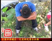 未分類相簿(宜蘭神佛繡莊):孔雀餅乾廣告拍攝22.jpg