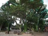 溪南溪北走一回:宜蘭經典百K逍遙遊之溪北環線:09-丟丟噹森林.JPG
