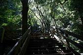 拉拉山慈湖一日遊:DSC_2161.jpg
