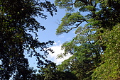 拉拉山慈湖一日遊:DSC_2187.jpg