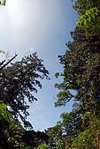 拉拉山慈湖一日遊:DSC_2189.jpg