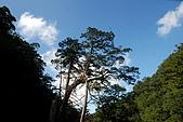 拉拉山慈湖一日遊:DSC_2197.jpg