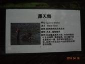 20190414~16東師53級新竹同學會風景照(第2.3日):DSC07928.jpg