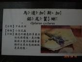 20190414~16東師53級新竹同學會風景照(第2.3日):DSC07893.jpg