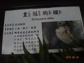 20190414~16東師53級新竹同學會風景照(第2.3日):DSC07918.jpg