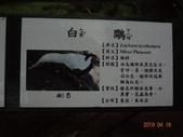 20190414~16東師53級新竹同學會風景照(第2.3日):DSC07927.jpg