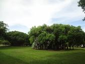 2020東師53級高雄真愛同學會(0707~09城市商旅)風景照:DSC01117.jpg