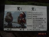 20190414~16東師53級新竹同學會風景照(第2.3日):DSC07935.jpg