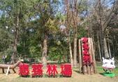 2021東師53級日月潭同學會_風景照:1616841715343.jpg