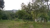 20190414~16東師53級新竹同學會風景照(第2.3日):DSC07573-IMAG6948.jpg