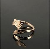 cartier卡地亞鈦鋼飾品-不褪色不過敏:卡地亞戒指0228p25 (5).jpg