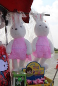 桃園地景節(月兔):IMG_4732.jpg