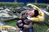 紙風車台灣動物昆蟲創意展:IMG_7357.jpg