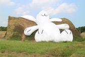 桃園地景節(月兔):IMG_4662.jpg