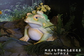 紙風車台灣動物昆蟲創意展:IMG_7305.jpg