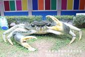 紙風車台灣動物昆蟲創意展:IMG_7304.jpg