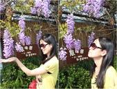 台北花卉村:1.jpg