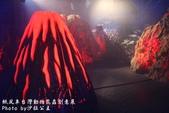 紙風車台灣動物昆蟲創意展:IMG_7323.jpg