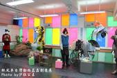 紙風車台灣動物昆蟲創意展:IMG_7336.jpg