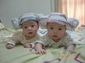 羊角頭倆兄弟:CIMG3256
