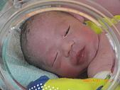寶寶成長日記:CIMG0992