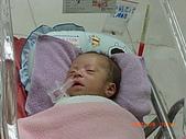寶寶成長日記:CIMG1665