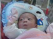 寶寶成長日記:CIMG1822