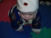 鼠年新春快樂:CIMG3941.JPG