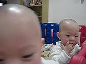 我們滿週歲了:CIMG4161.JPG