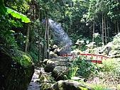 馬武督探索森林:IMG_0110