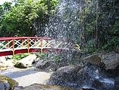 馬武督探索森林:IMG_0116