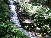 馬武督探索森林:IMG_0122