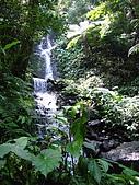 馬武督探索森林:IMG_0123