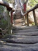 大坑步道:SANY0015
