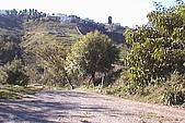 清境維也納露營區-環境景觀(小太陽):uvs090719-012.jpg