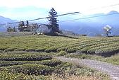 清境維也納露營區-環境景觀(小太陽):uvs091015-041.jpg