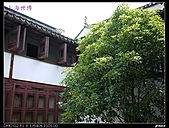 2010上海0918:2010上海世博-朱家角 016.jpg