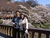 2010 京阪神賞櫻行~養老之瀧:DSC02054.JPG