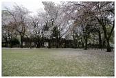 2016 九州水前寺:2016日本九州_1009.JPG