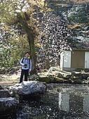 2010 京阪神賞櫻行~養老之瀧:DSC02075.JPG