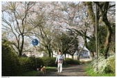 2016 九州阿蘇溫泉:2016日本九州_1047.JPG