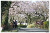 2016 九州阿蘇溫泉:2016日本九州_1034.JPG