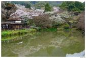 2016 九州御船山樂園:2016日本九州_0704.JPG