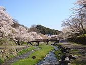 2010 京阪神賞櫻行~養老之瀧:DSC02078.JPG